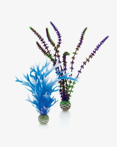 Biorb Plant Pack Blue Medium