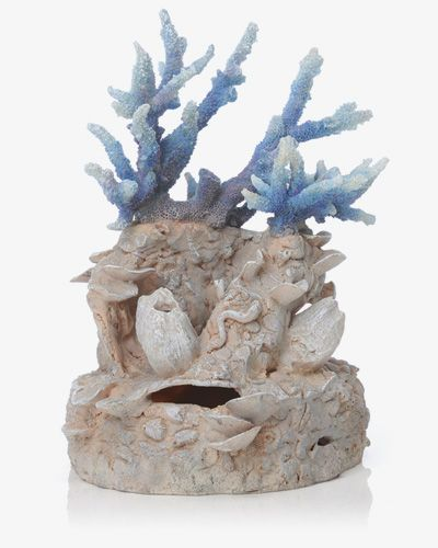 Biorb Reef Coral Blue