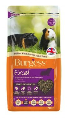 Burgess Excel Guinea Pig - Nuggets with Blackcurrent and Oregano