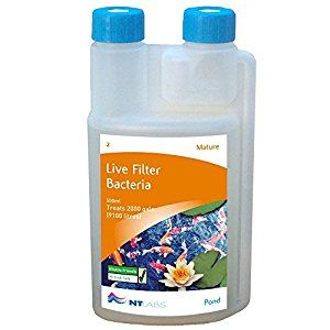 Live Filter Bacteria